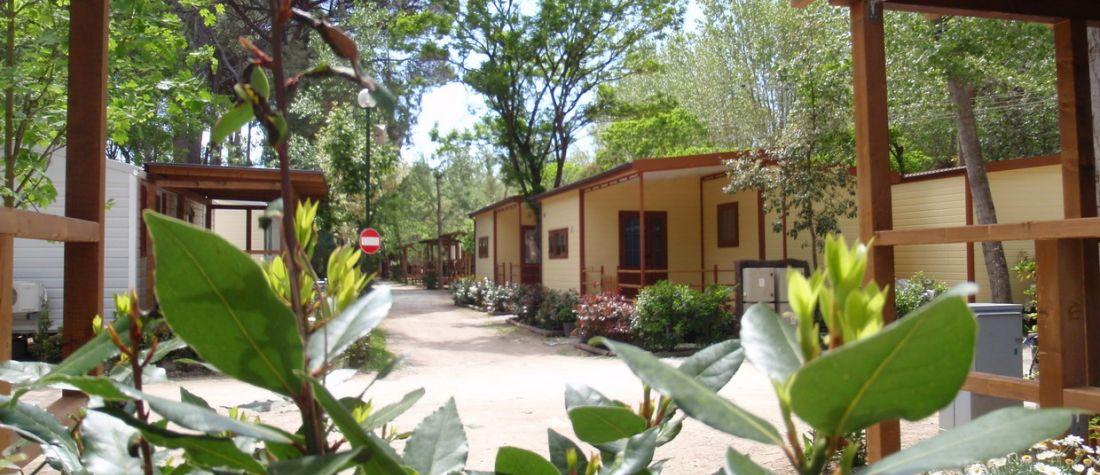 Campeggio Bosco Verde - Viareggio