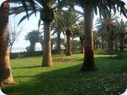 De boulevard van Tortoreto Lido