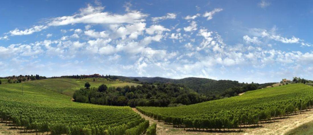 Castellare di Tonda - Montaione