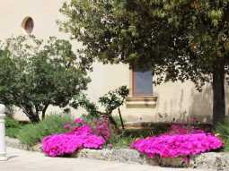 Masseria Pagani