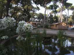 Garten und Serviceleistungen