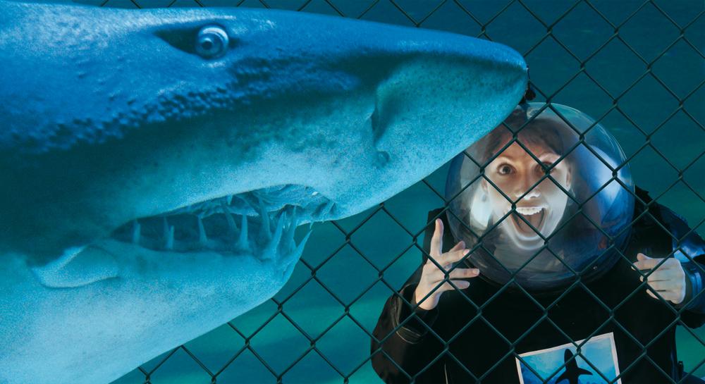The largest Aquarium of the adriatic coast. The Aquarium of Cattolica ...