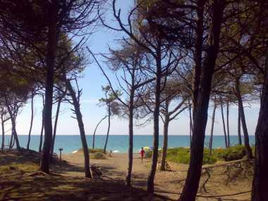 Bau Beach Gorette Nord