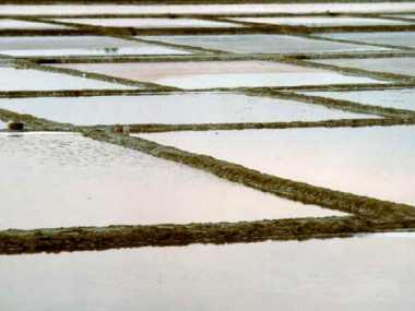 Salzwerke in Cervia