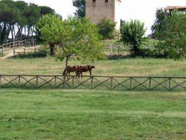 Kloster Chiaravalle di Fiastra