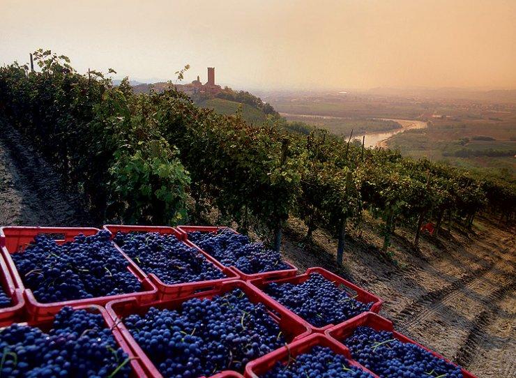 Langhe-Roero und Monferrato