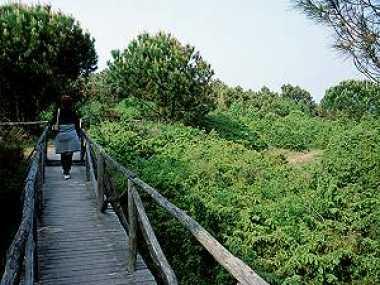 Der Botanische Garten in Rosolina Mare
