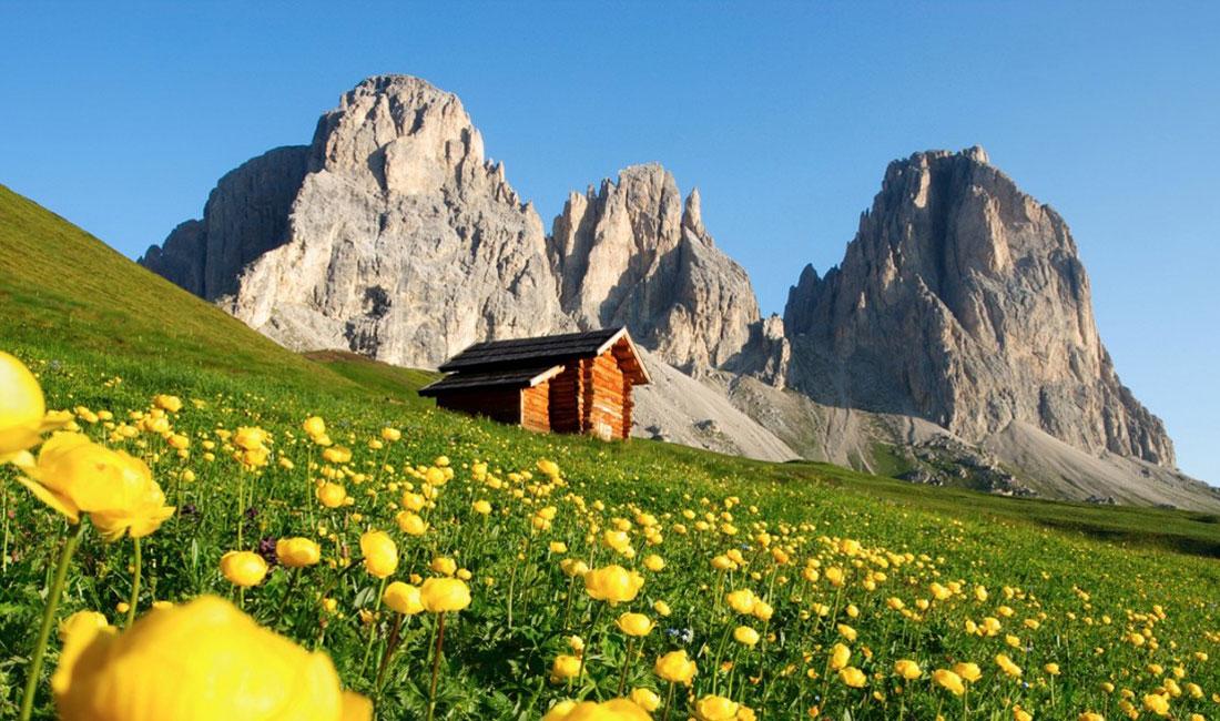Appartamenti Vacanze Trentino